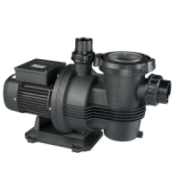 Davey Typhoon C100M Pool Pump